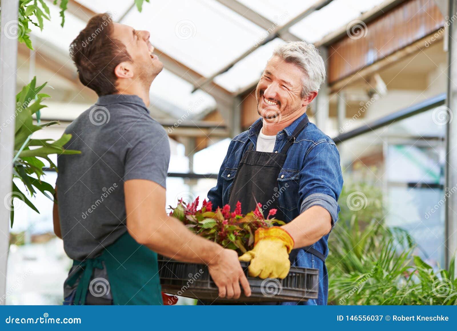 Dos hombres como floristas en cultivar un huerto