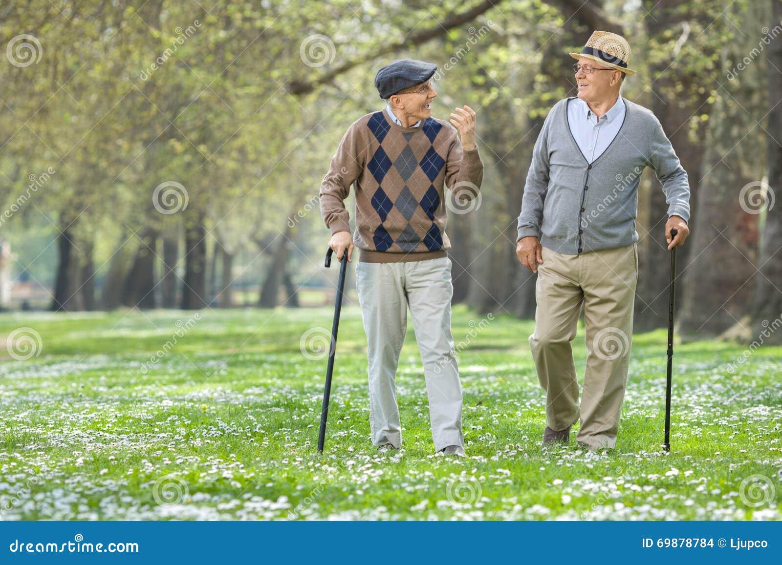Dos hombres mayores alegres que caminan en un parque