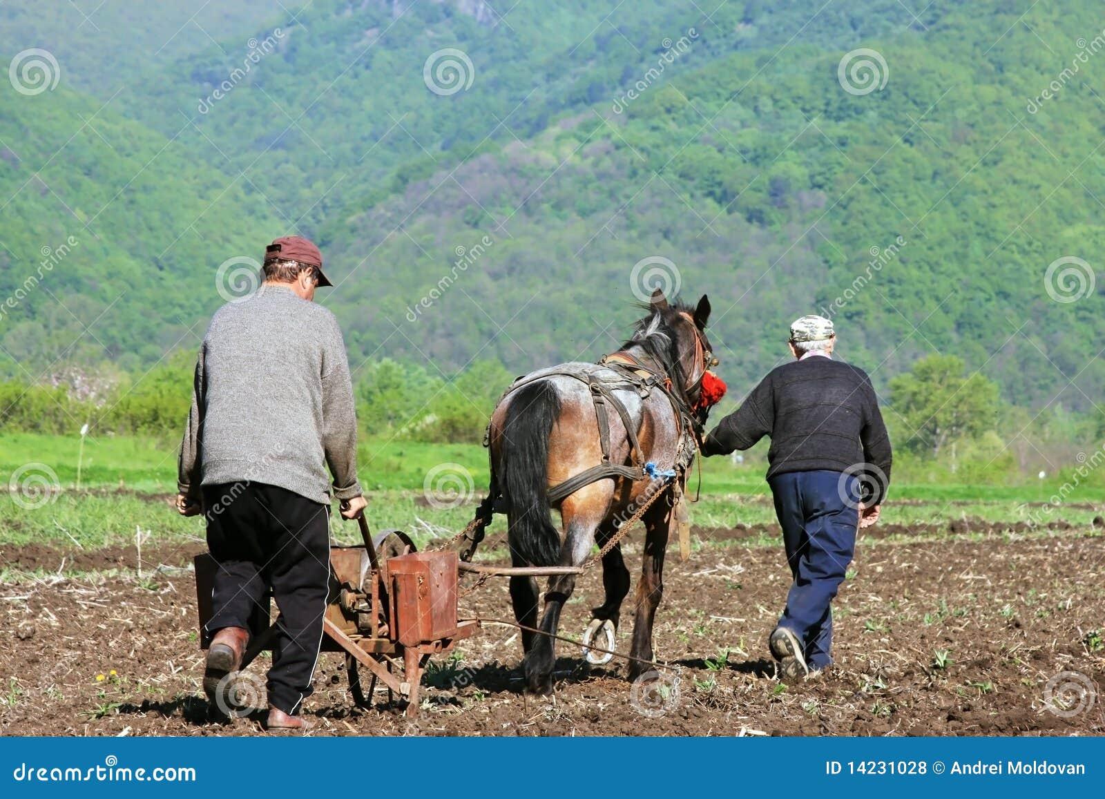 Dos hombres y un caballo que ara y que siembra
