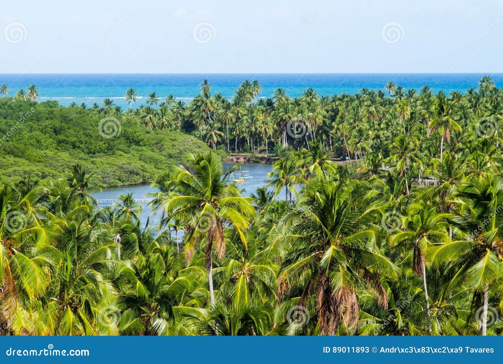 DOS Milagres - Alagoas, Brasile di Miguel del sao