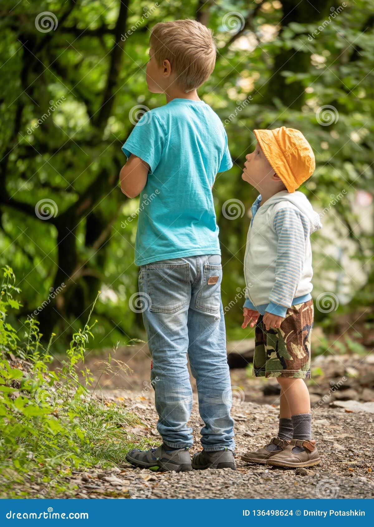 Dos muchachos, 3 años y 7 años en la trayectoria de la manera verde de la mirada una del bosque