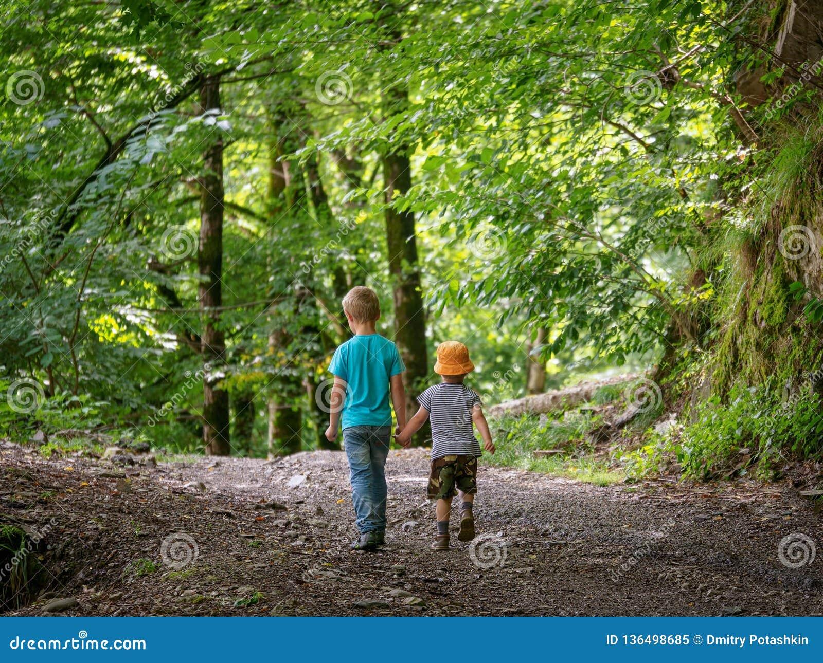 Dos muchachos van a lo largo de la trayectoria en las manos verdes del bosque y del control
