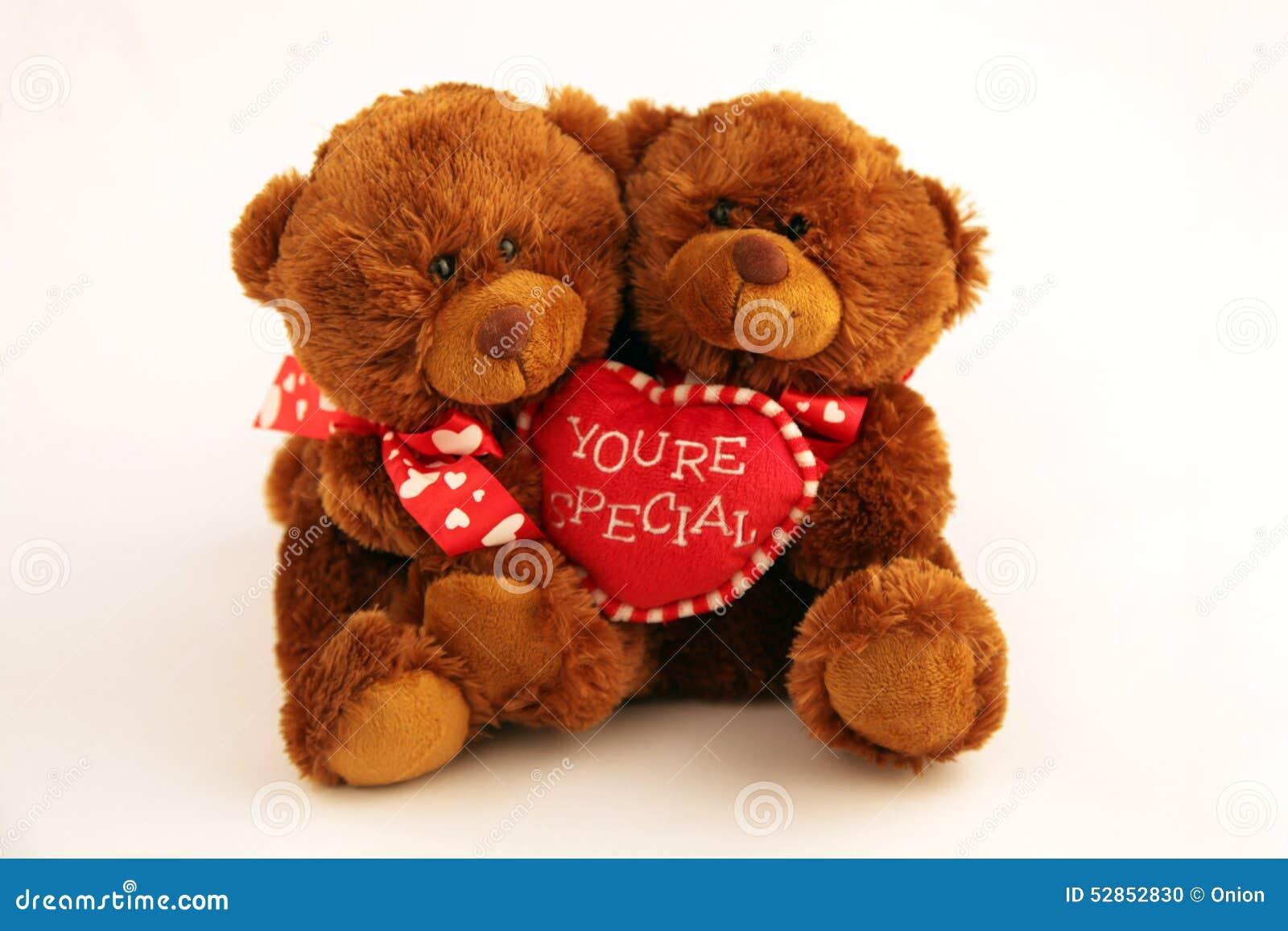 Dos osos marrones