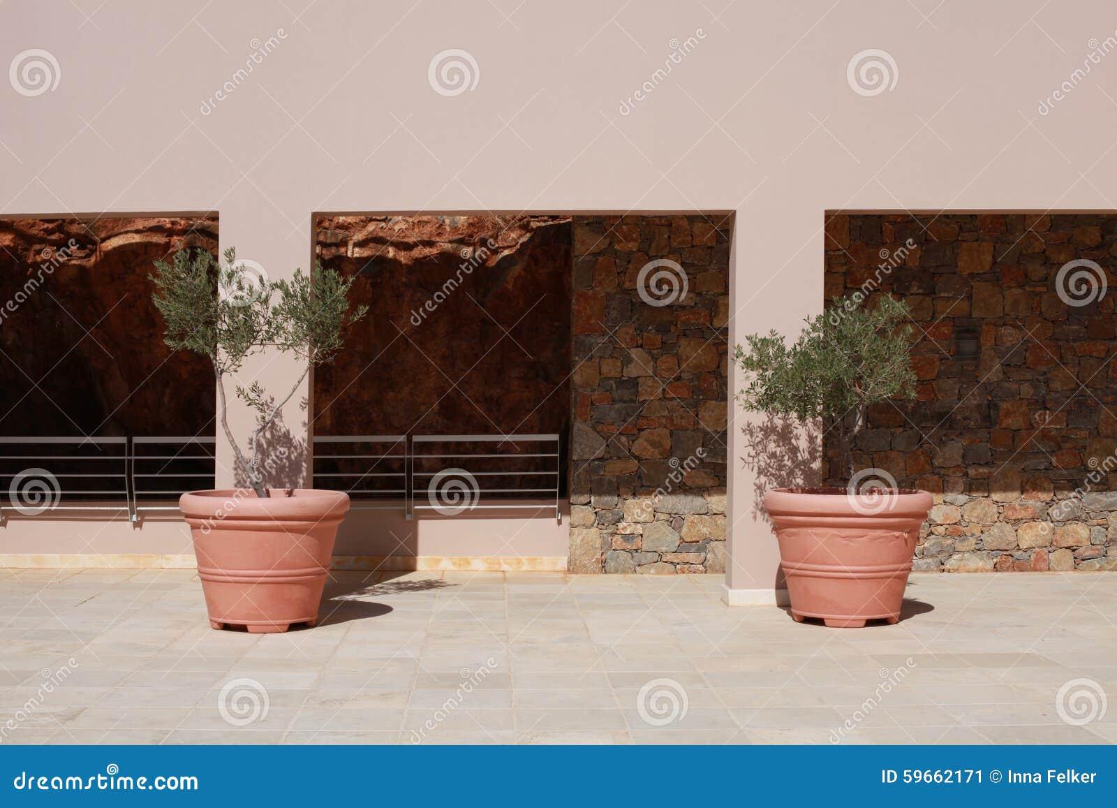 Dos Potes De La Terracota Con Los Olivos En Terraza Del