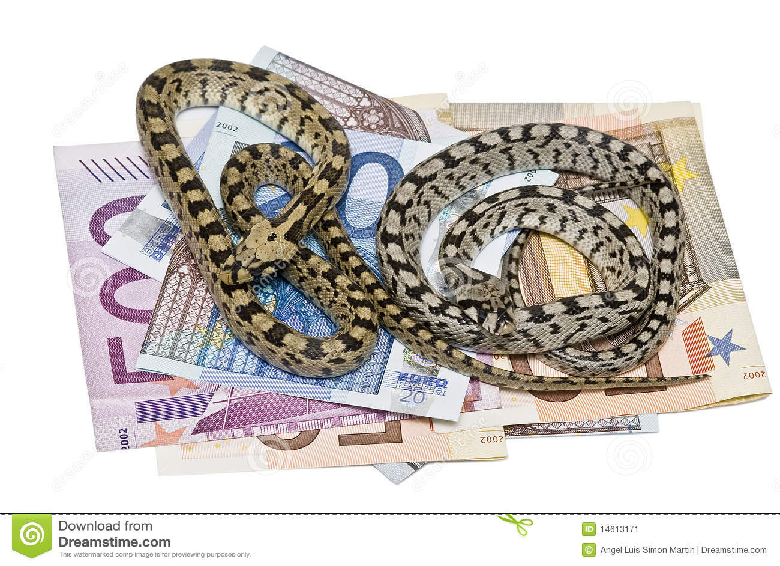 Dos serpientes en mucho dinero imagen de archivo imagen - Bater roca precios ...