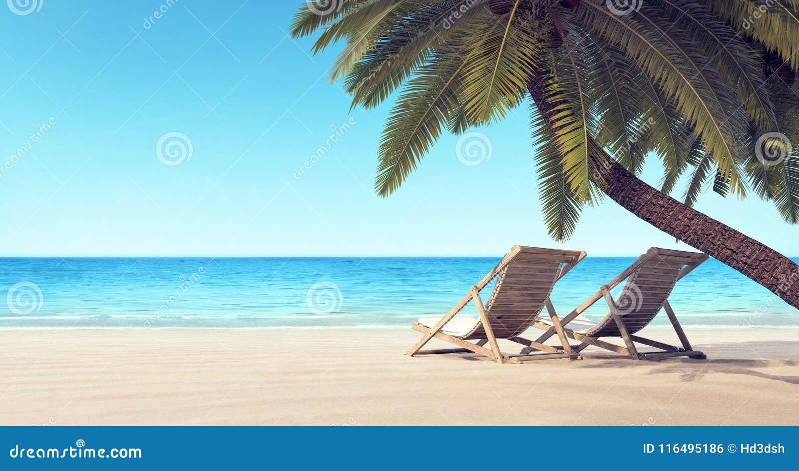 Dos sillas en la playa bajo fondo del verano de la palmera