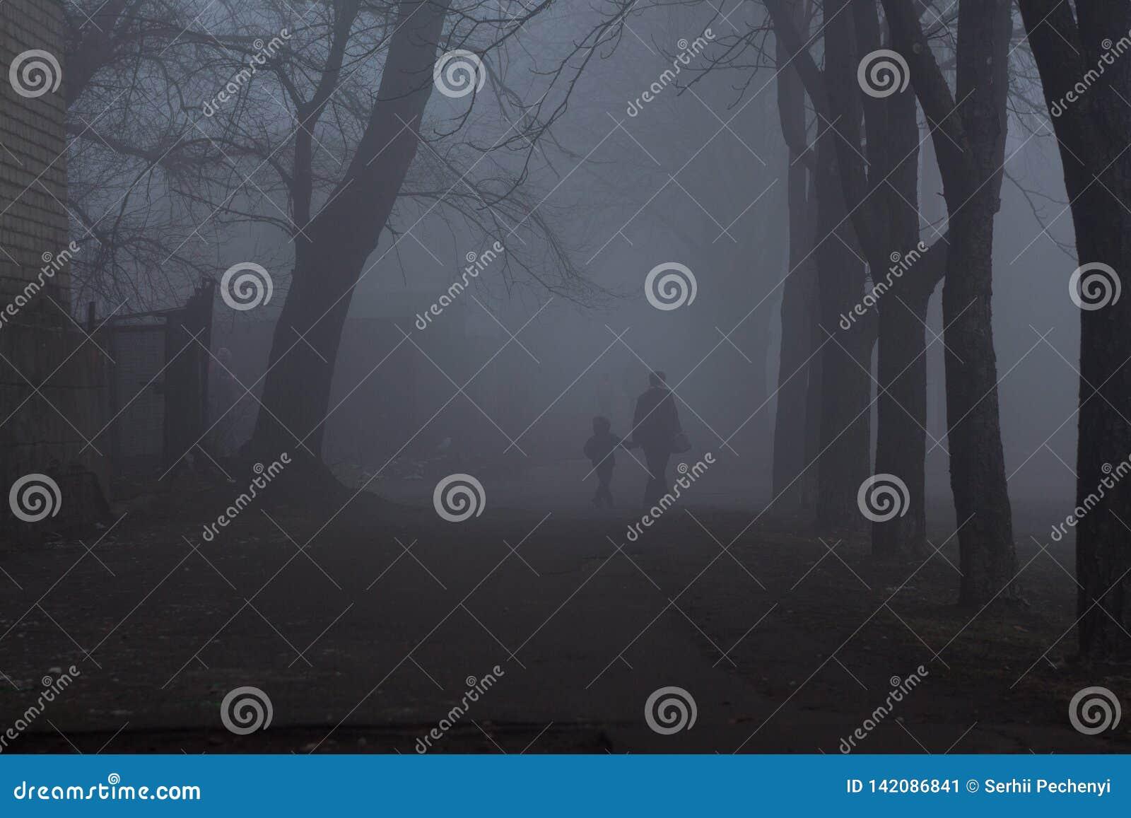 Dos sirve caminar en la niebla gruesa en el tiempo de mañana