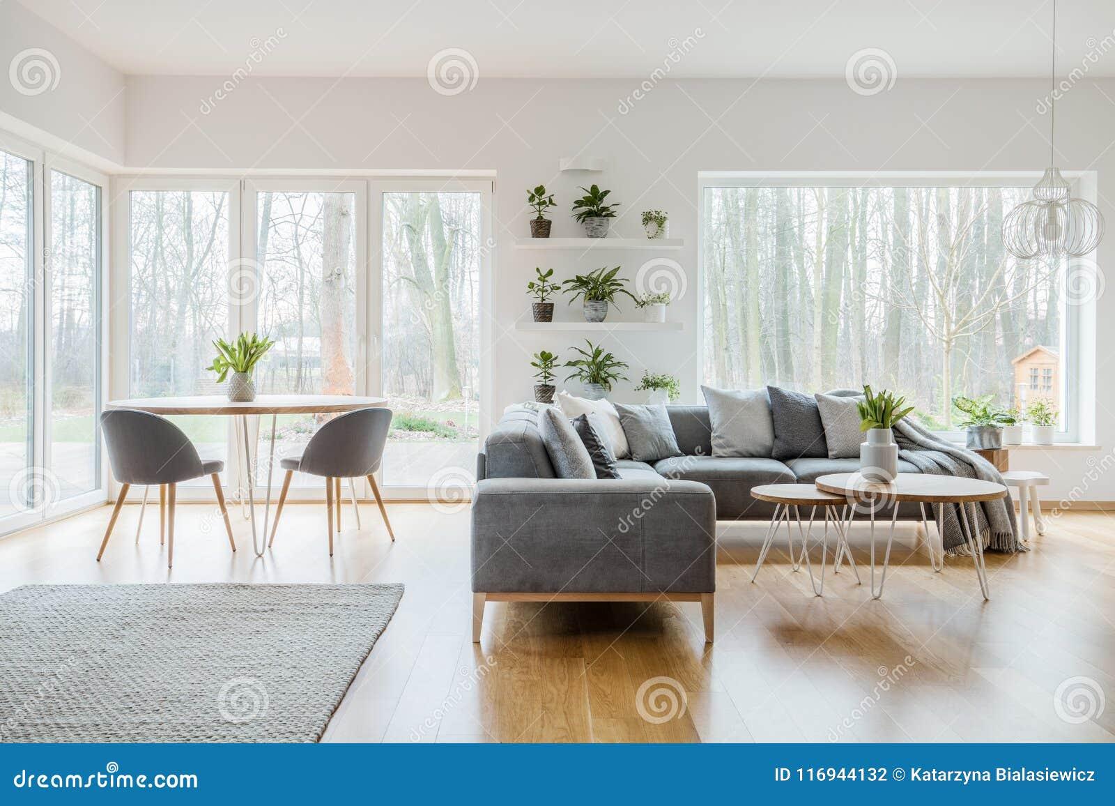 Dos tablas de la horquilla con los tulipanes frescos que se colocan en interior brillante de la sala de estar con las plantas en