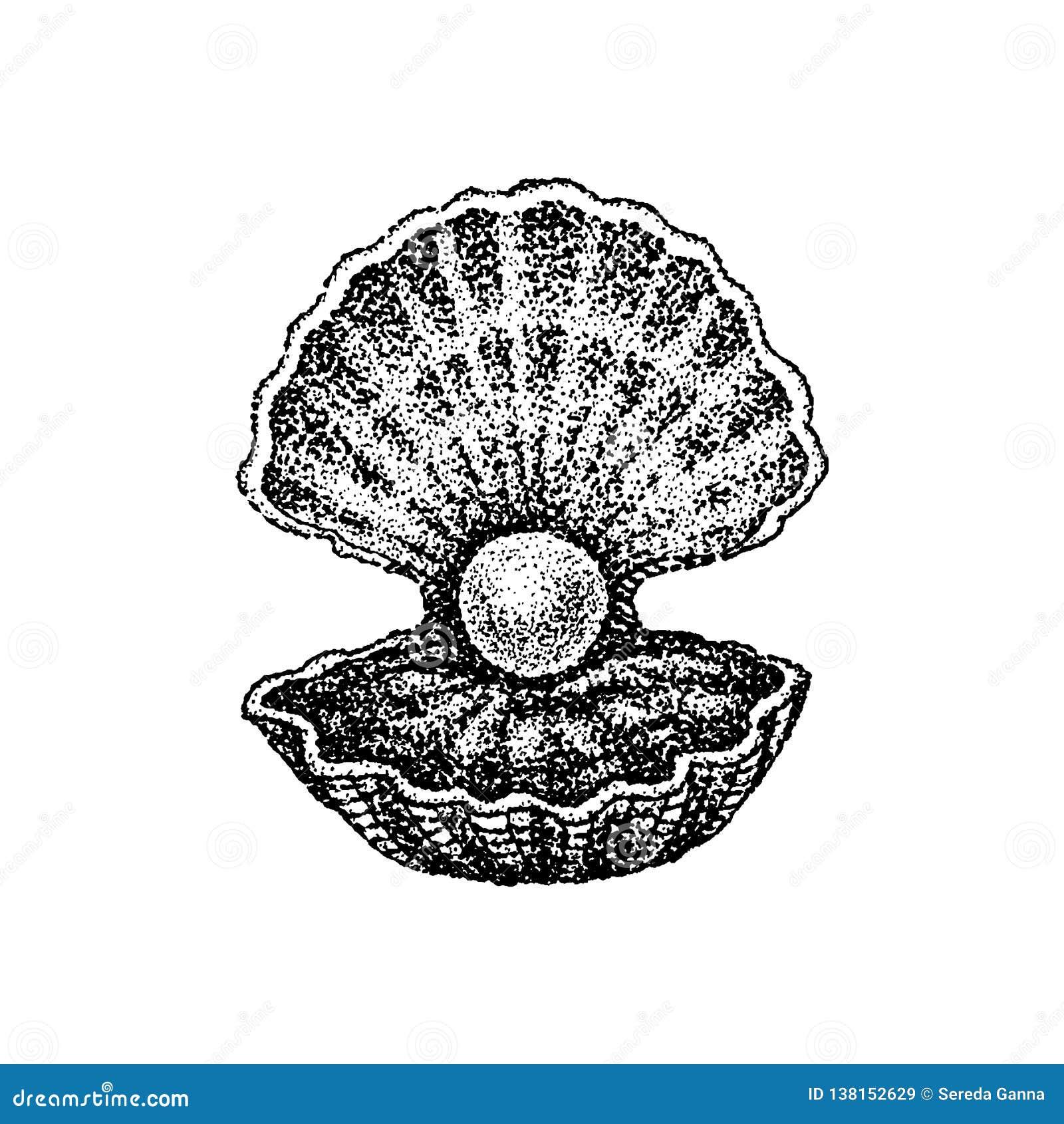 Dotwork Shell avec la perle