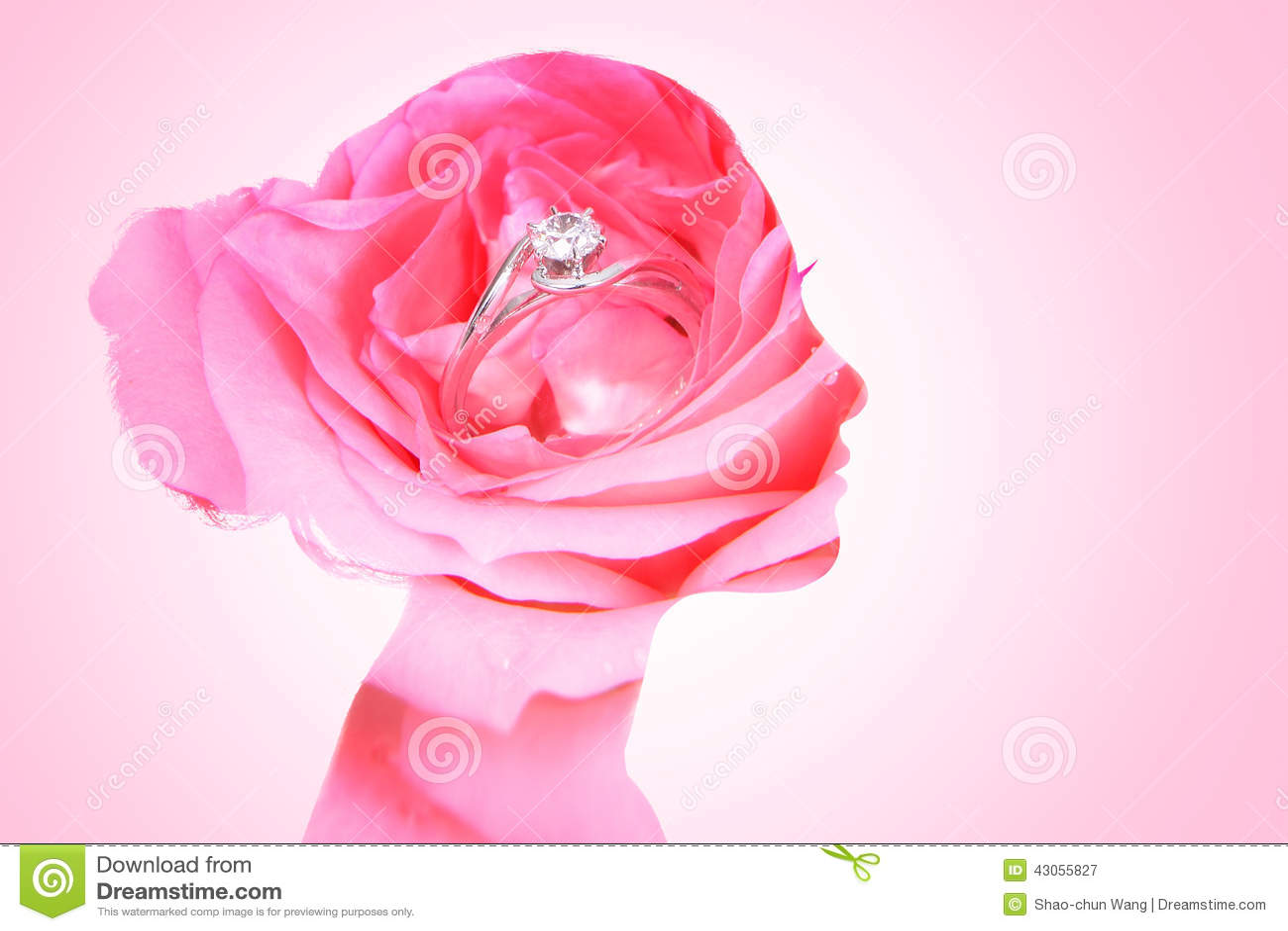 Double Exposure Of Beauty Bride Stock Image - Image of bouquet ...