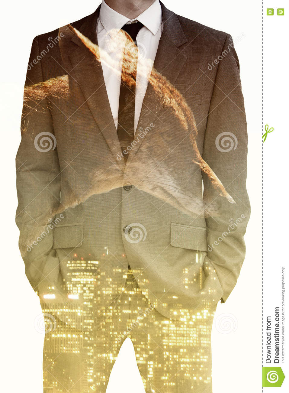 c14109a8ef115 Double Exposure Of Businessman , Coyote And Cityscape Stock Photo ...