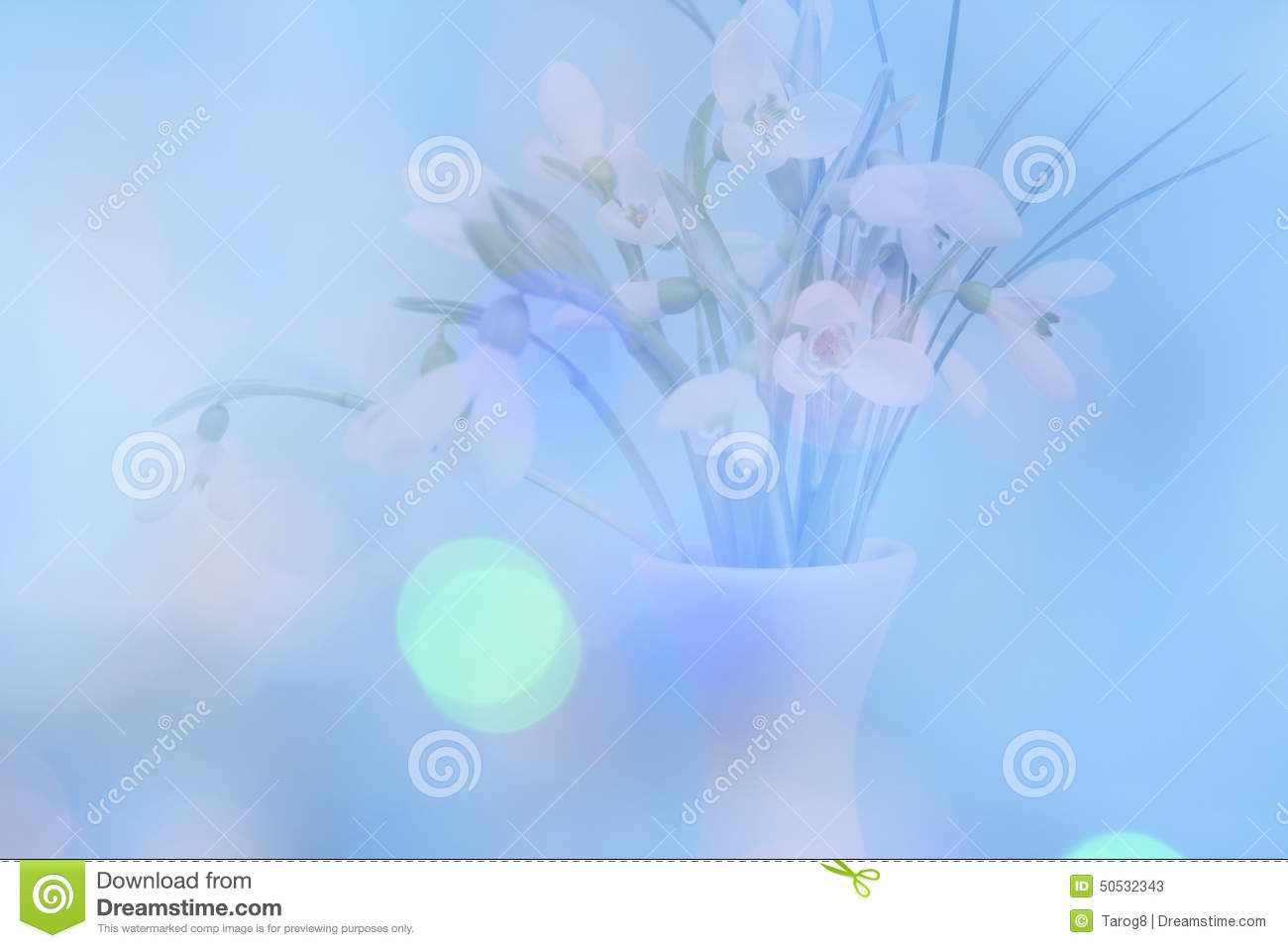 Double exposure of delicate snowdrops with a blue bokeh background