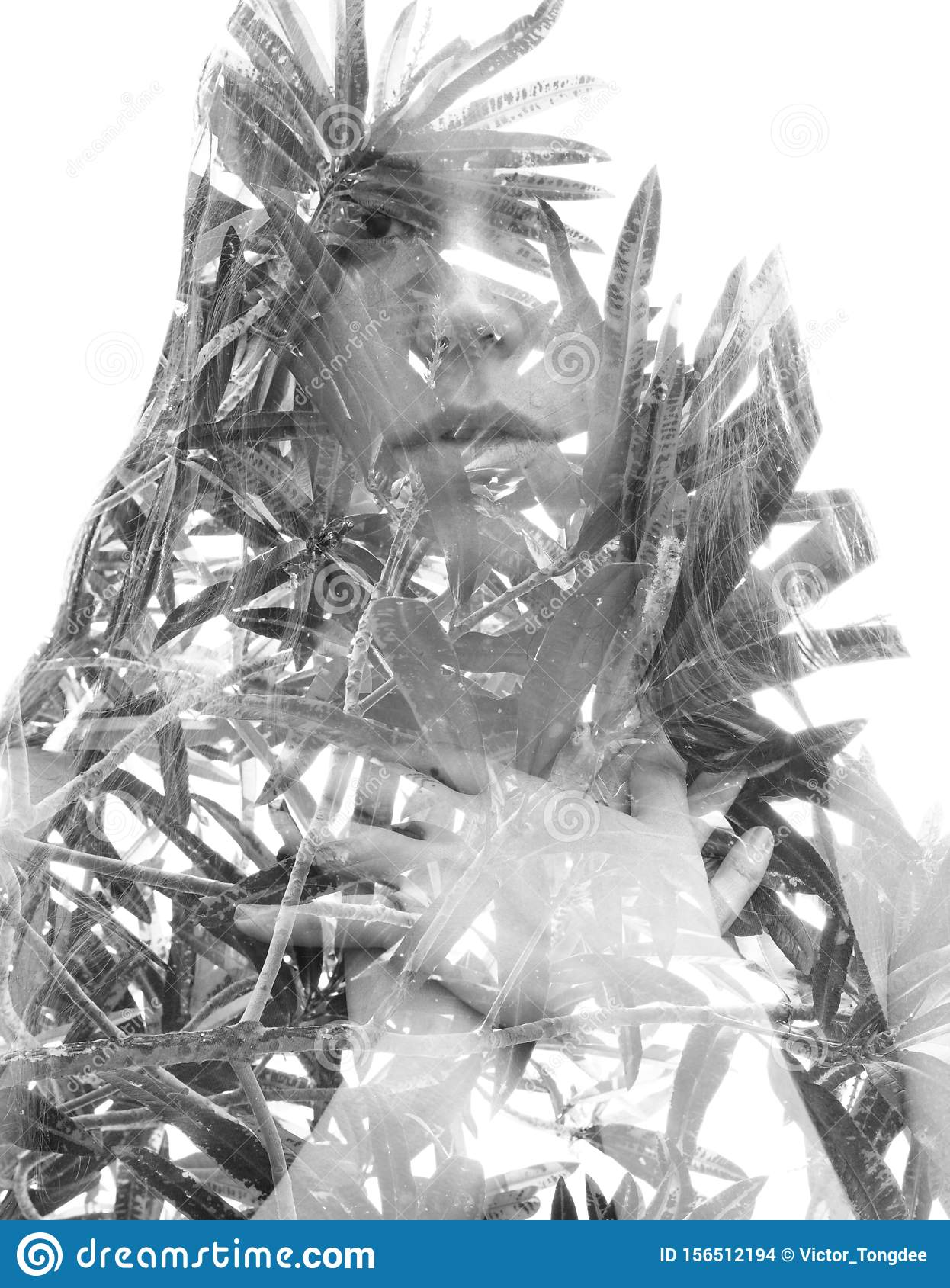 Double exposure portrait of a young natural beauty combined with tree leaves, black and white