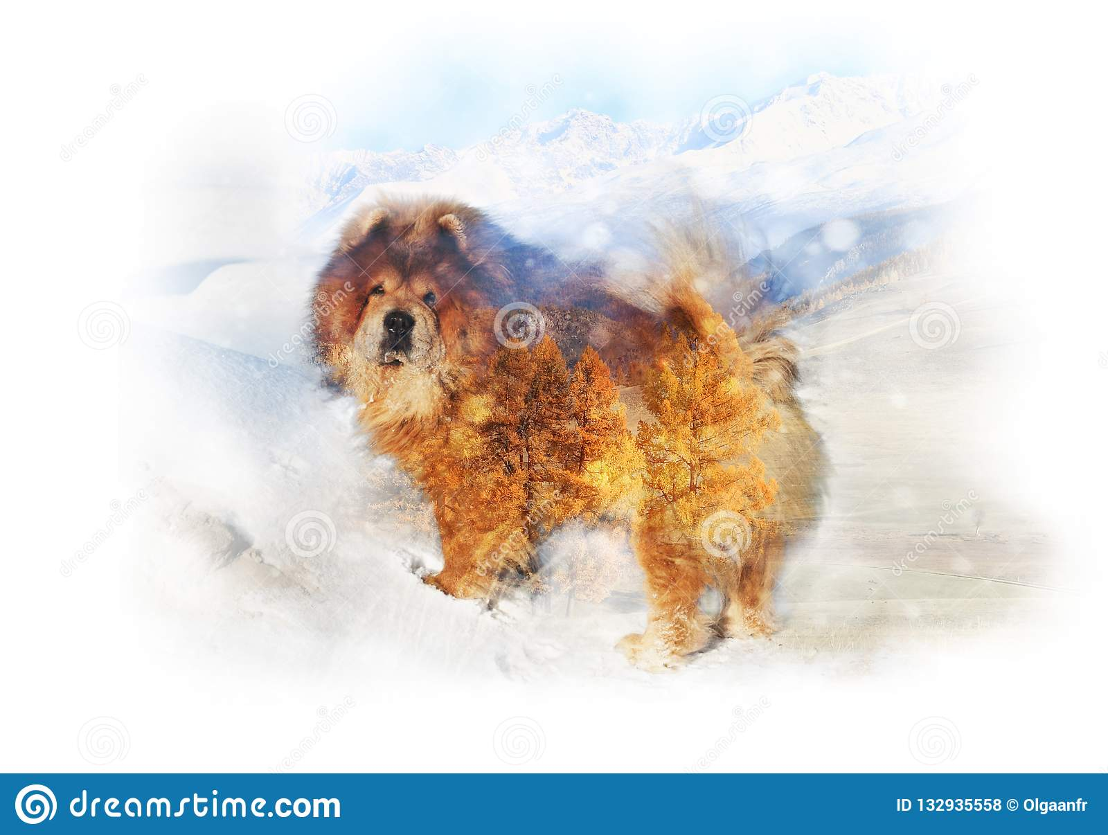 Double exposure from a red-haired dog and landscape of mountain