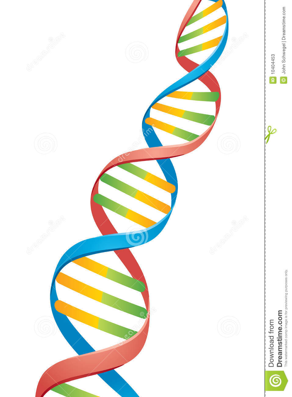More similar stock images of ` Double Helix DNA Strand `