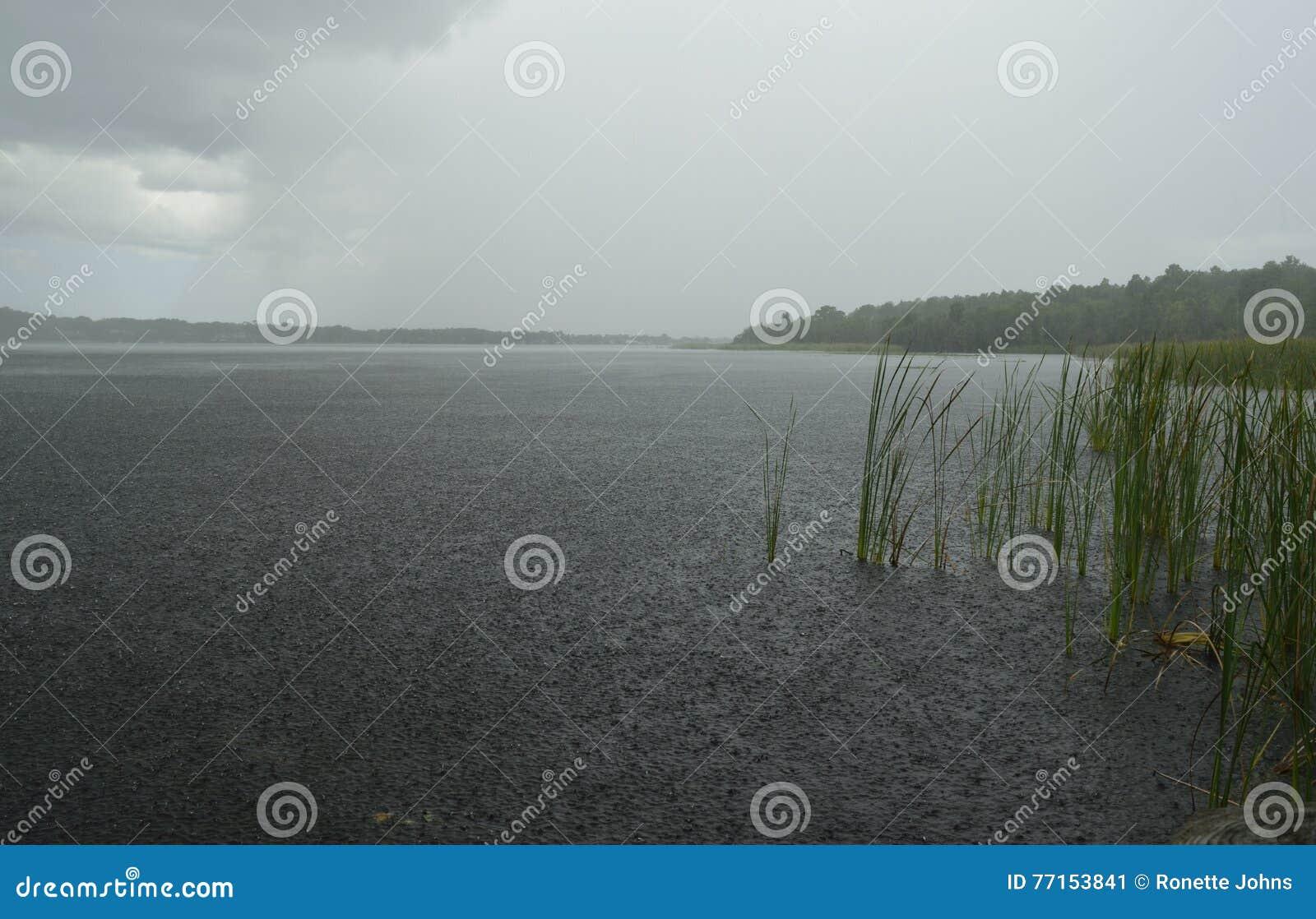Douches de forte pluie