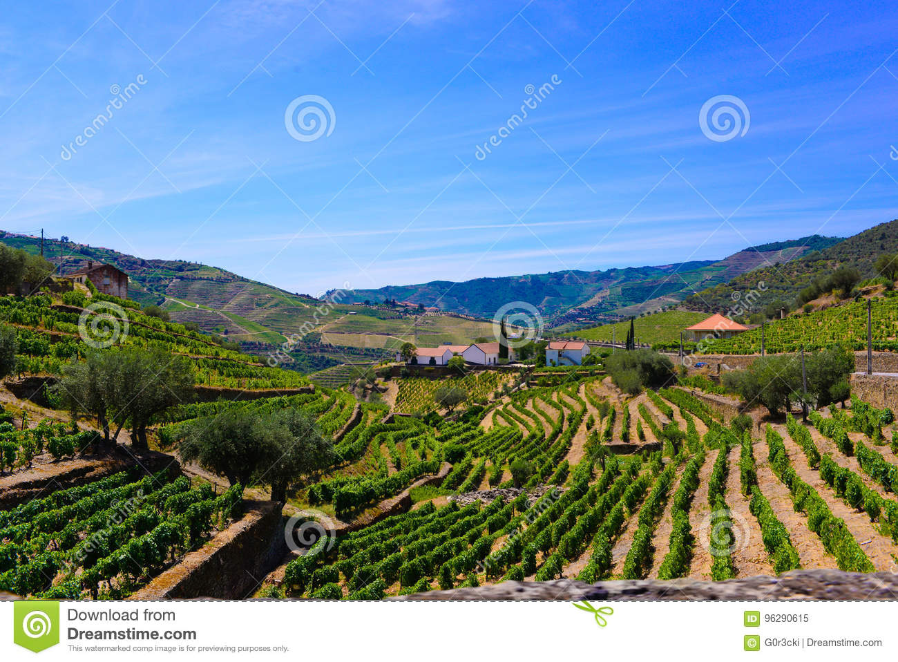 Portugal Douro Vineyards Rocky Terraces, Porto Wine Landscape, Farm Buildings