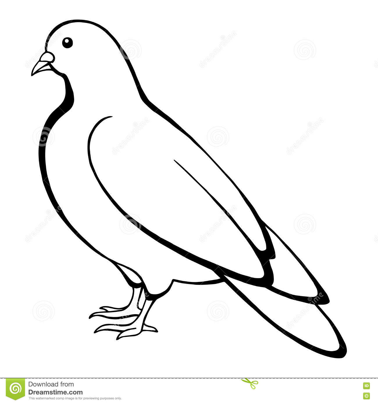 Line Art Dove : Dove bird black white sketch illustration stock vector