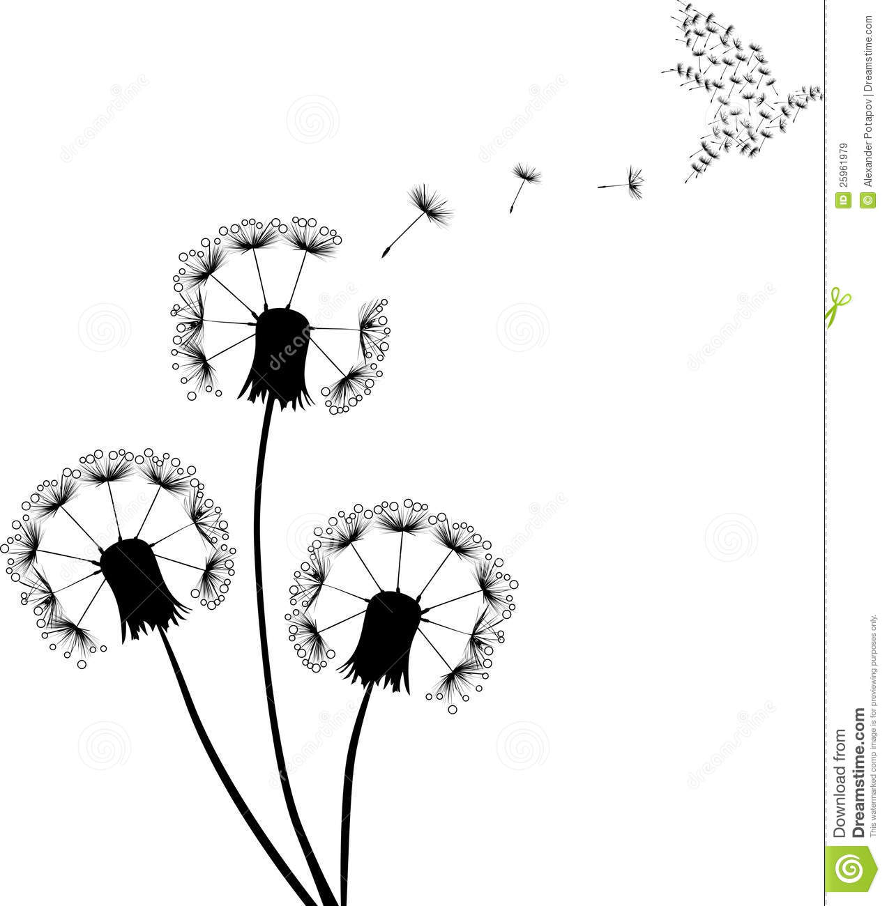 Wild Animal Wall Stickers Dove And Black Dandelions Royalty Free Stock Images