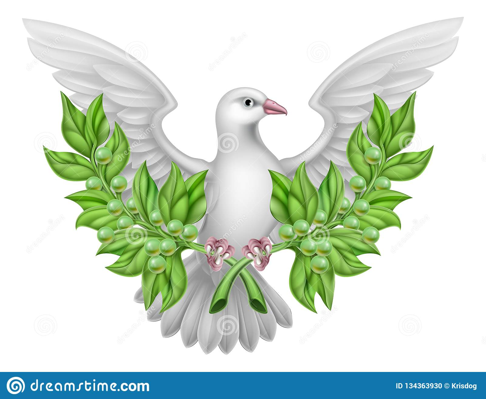 White Dove Peace With Olive Branch Stock Vector