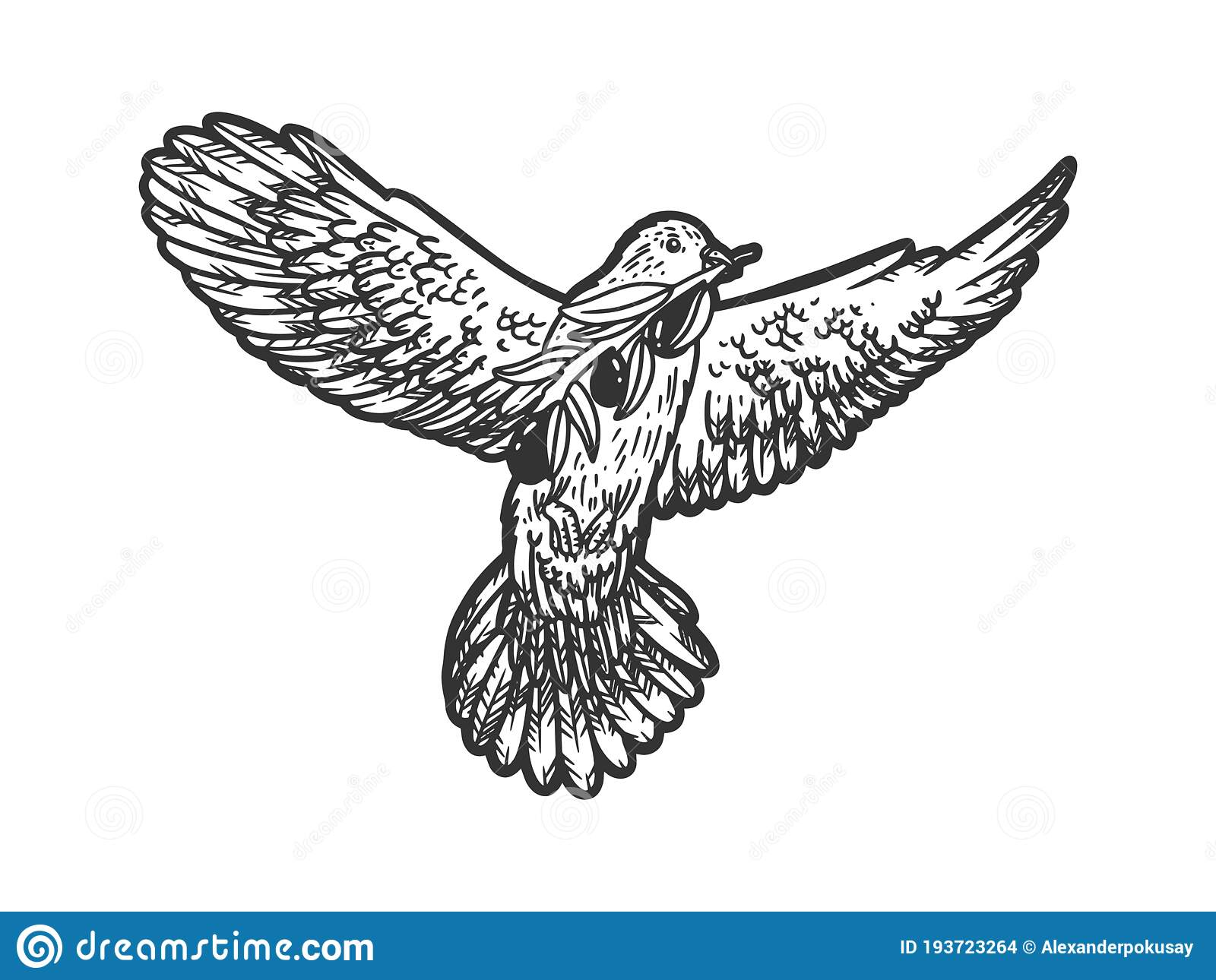 Dove With Olive Branch Sketch Vector Illustration Stock Vector Illustration Of Engraved Print 193723264