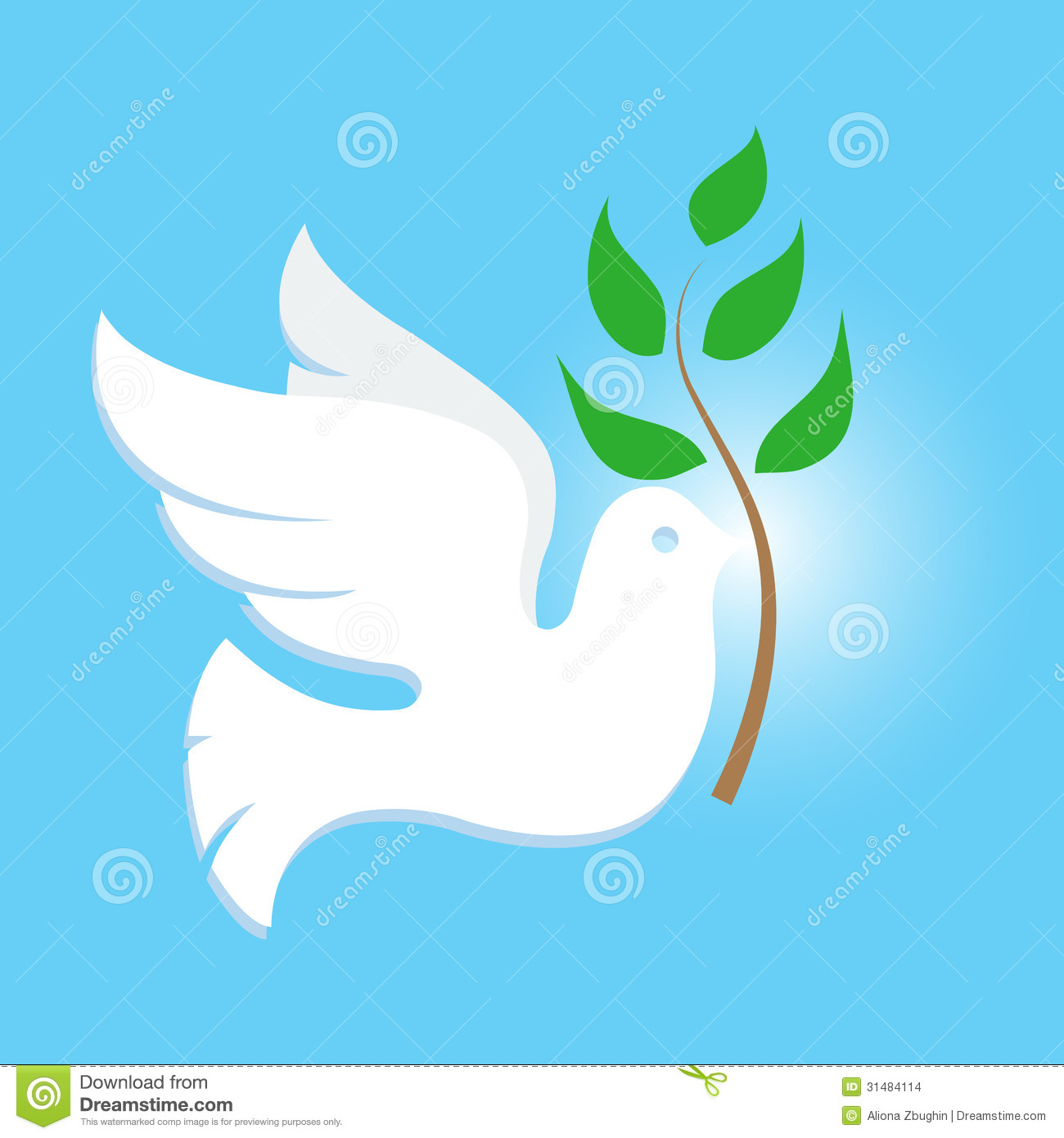 White Dove Symbol Of Peace
