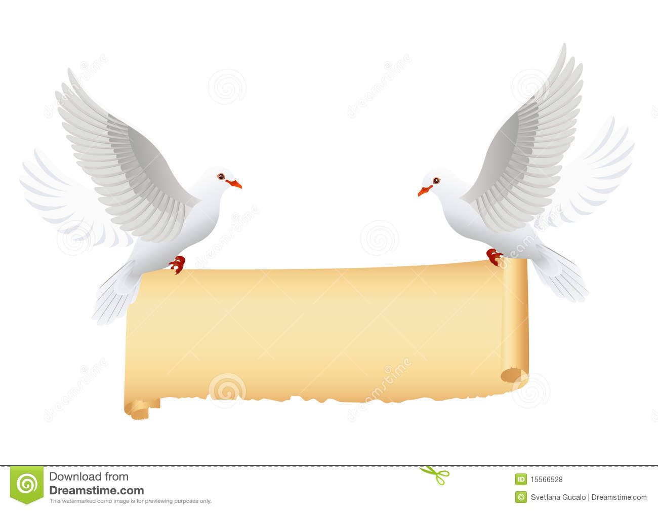 Doves With Banner Isolated Stock Vector Illustration Of