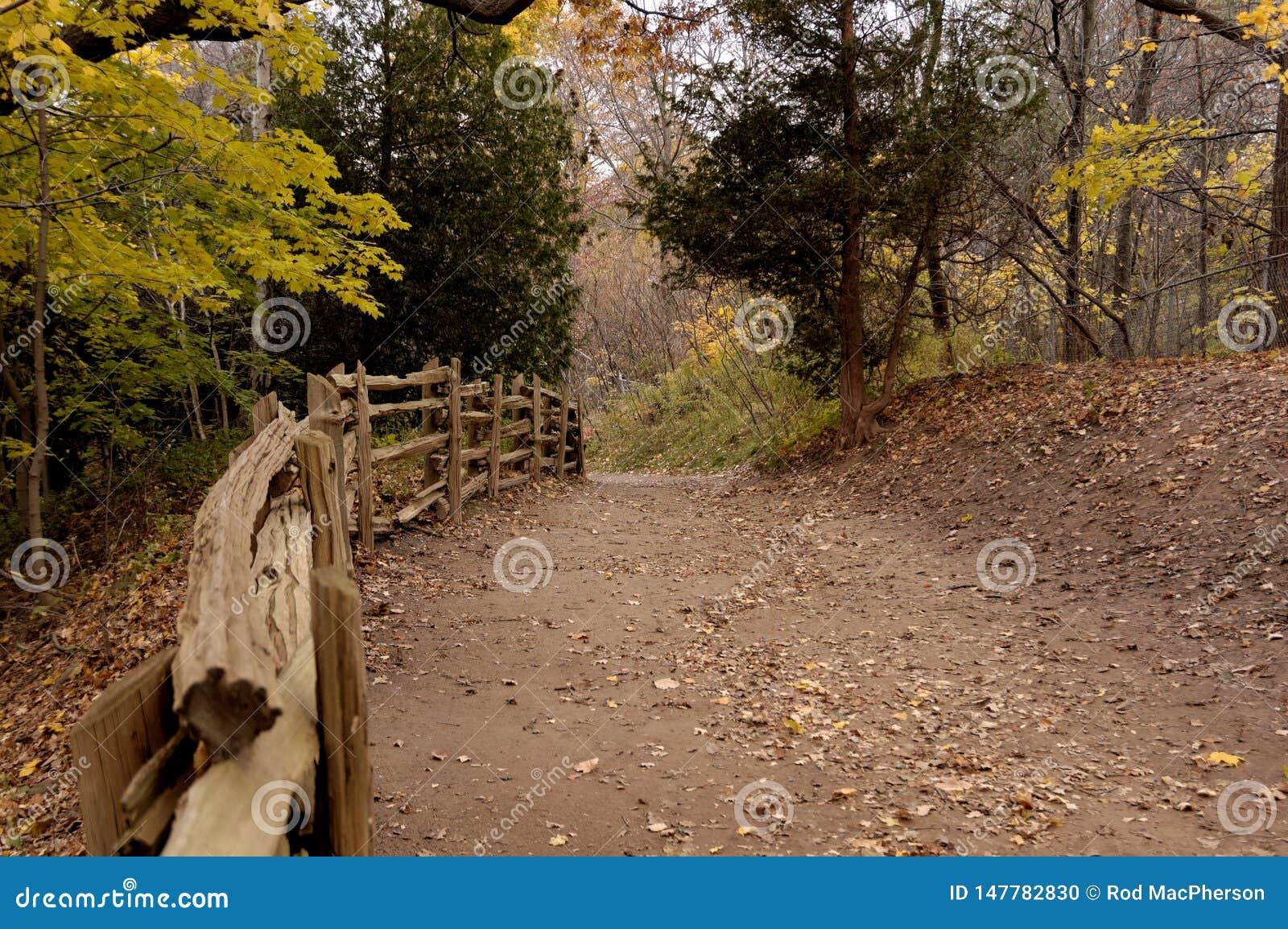 Down path