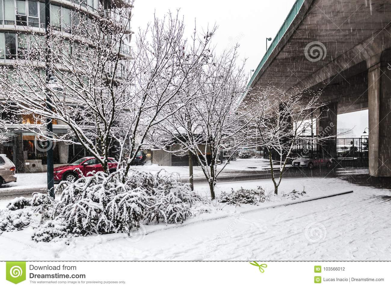 Downtown Vancouver BC, Covered in Snow, Canada