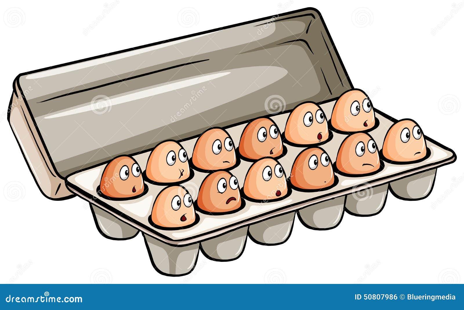 A Dozen Of Eggs Stock Vector Image 50807986