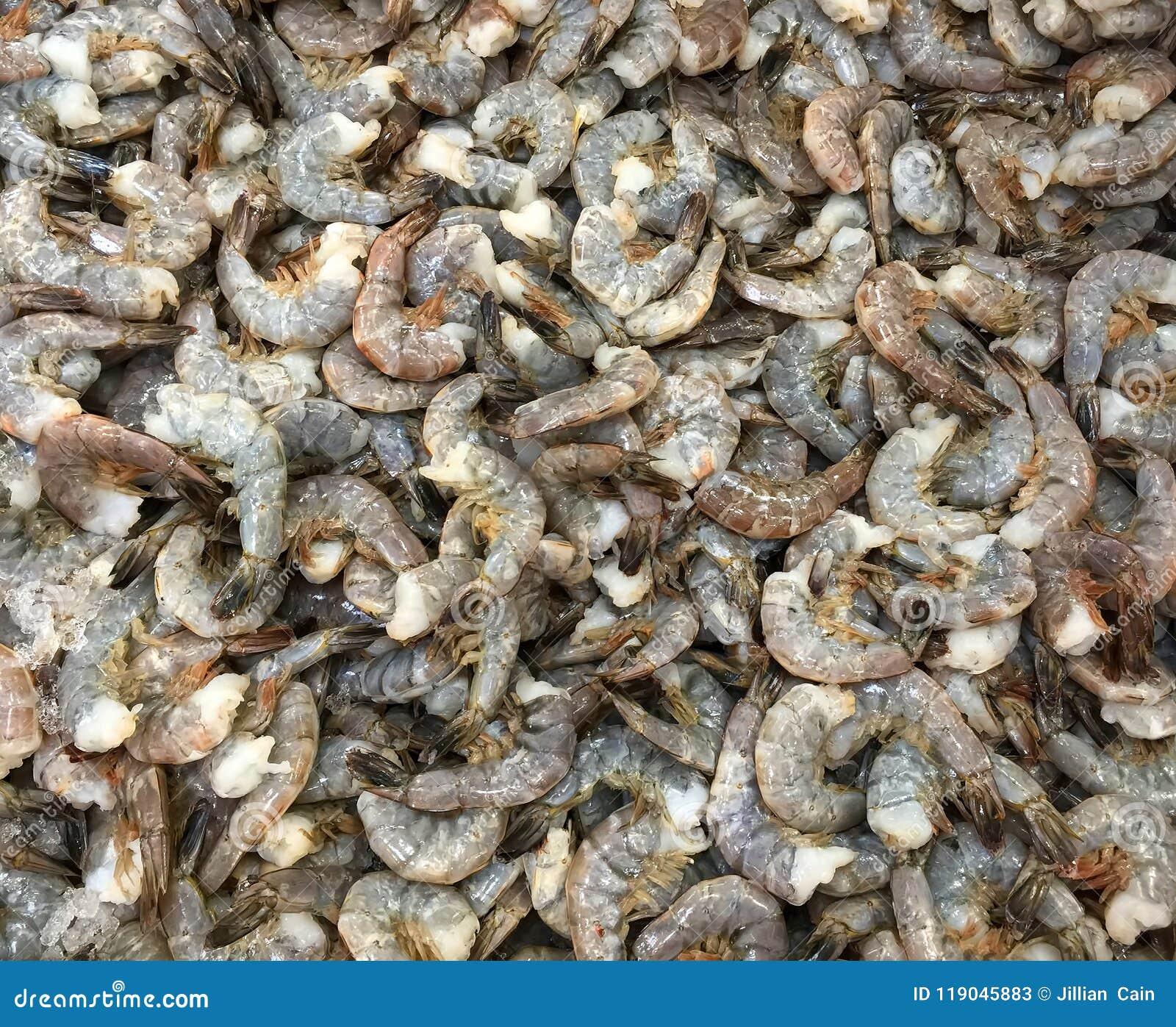 Dozens Of Jumbo Shrimp On Display Stock Image Image Of Crustacean