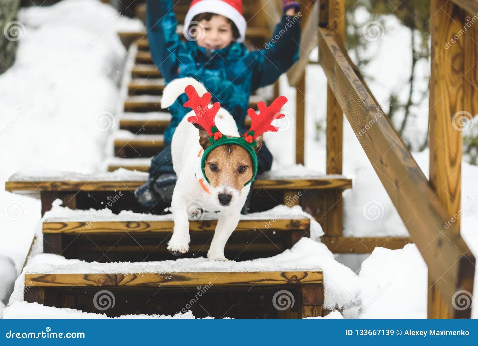 Dräkter för ferie för för ungepojke som och hund bärande spelar på stege av landshuset