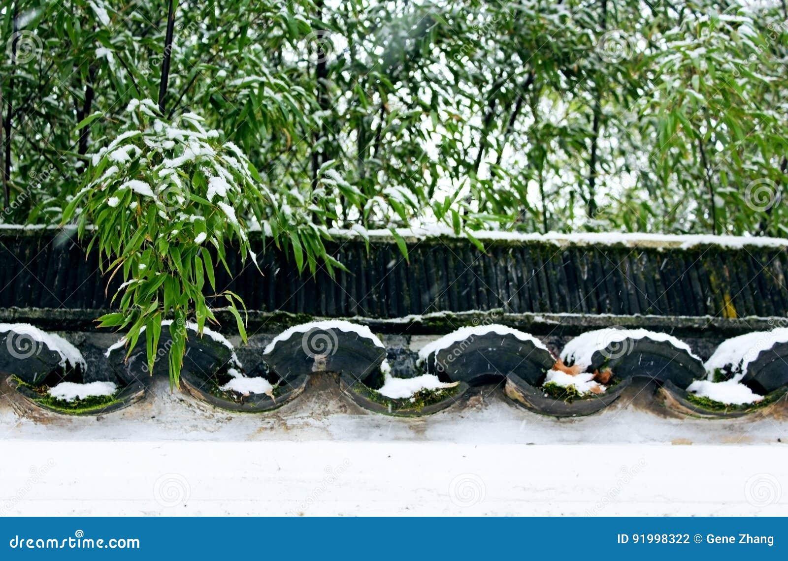 Dr. Jardim chinês clássico de Sun Yat-sen no inverno