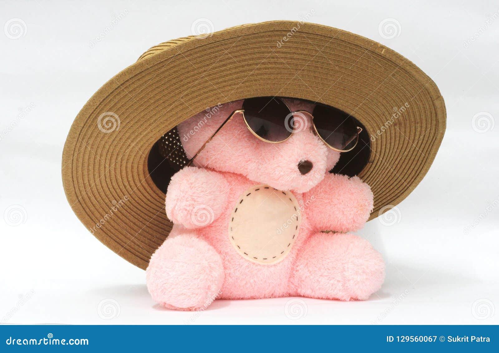 Draag met roze hoed en de leuke glazen, witte achtergrond, illustraties, kunnen aan andere werken worden toegeschreven