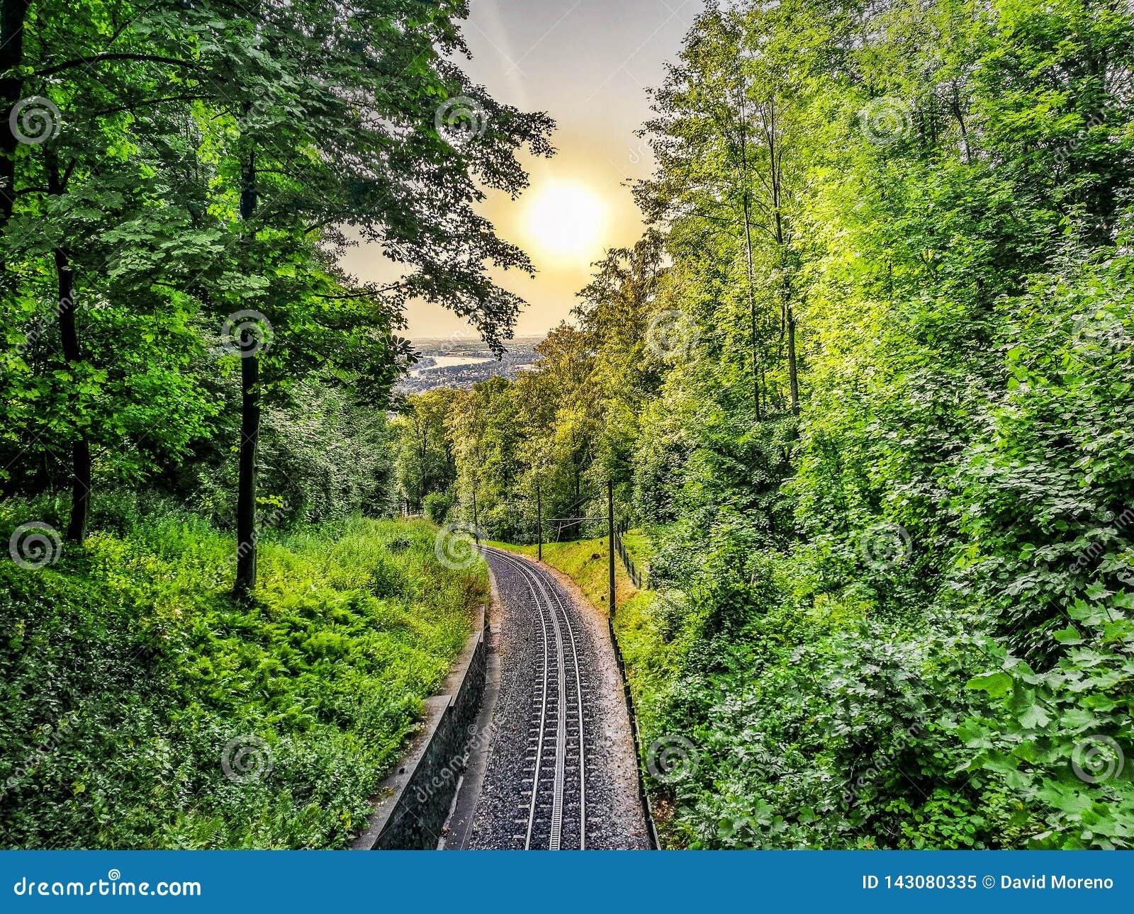 Drachenfelsspoorweg Duitsland in het midden van bomen tegen cityscape