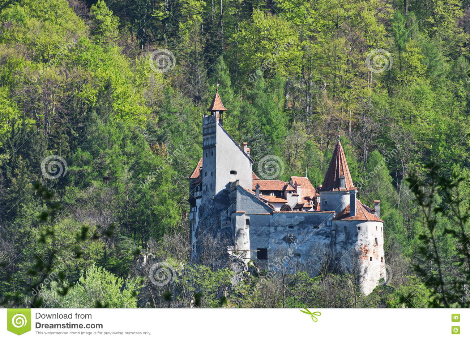 Dracula kasztel w otręby, Transylvania, Brasov, Rumunia