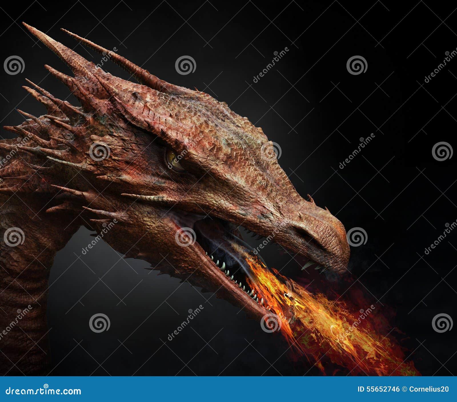 Dragón