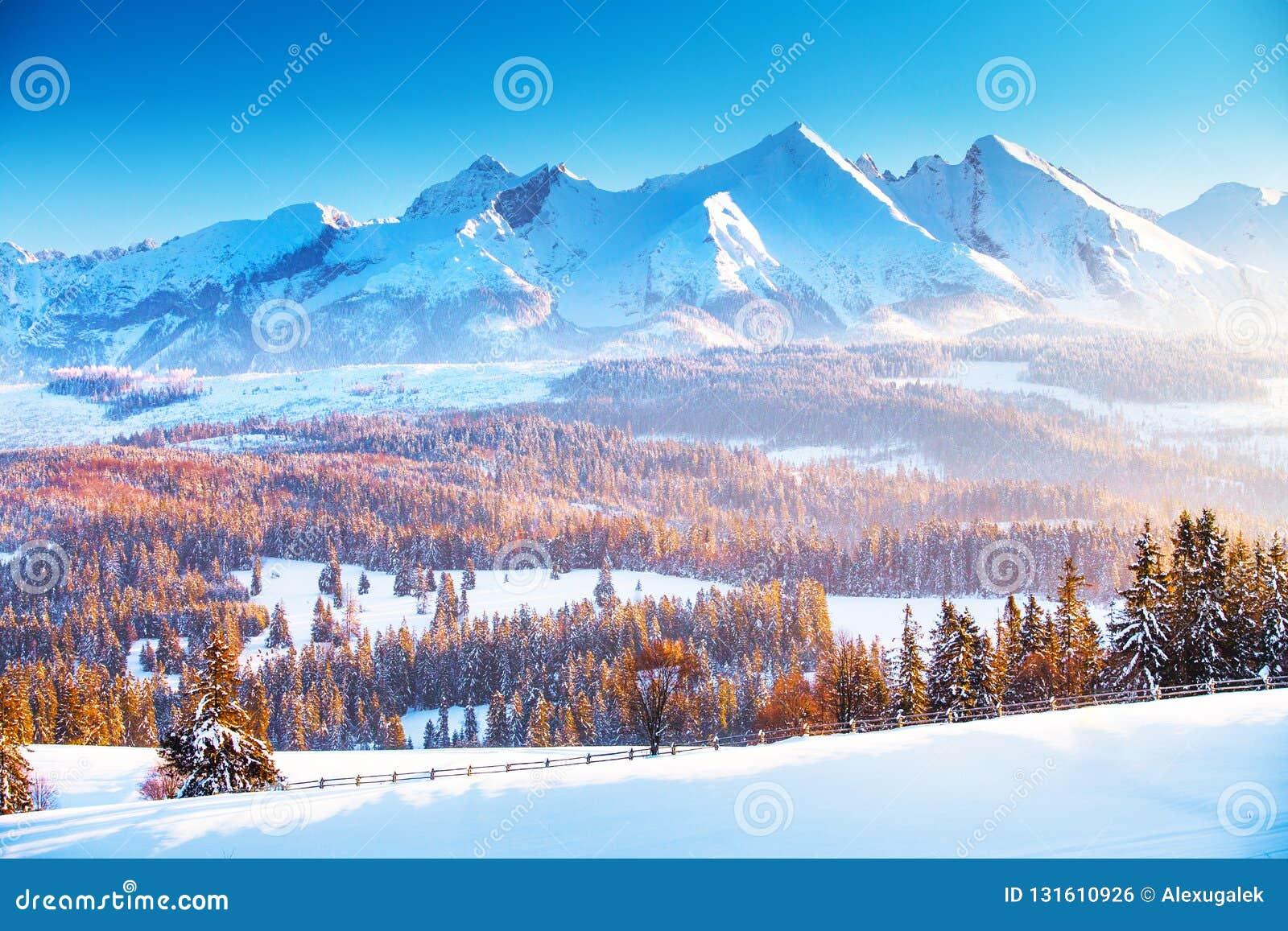 Dragobrat krajobrazowa halna Ukraine zima  W górach zima wschód słońca