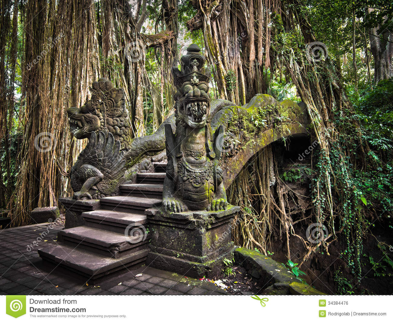 An impressive pathway/bridge cuts through the roots of a banyan tree ...