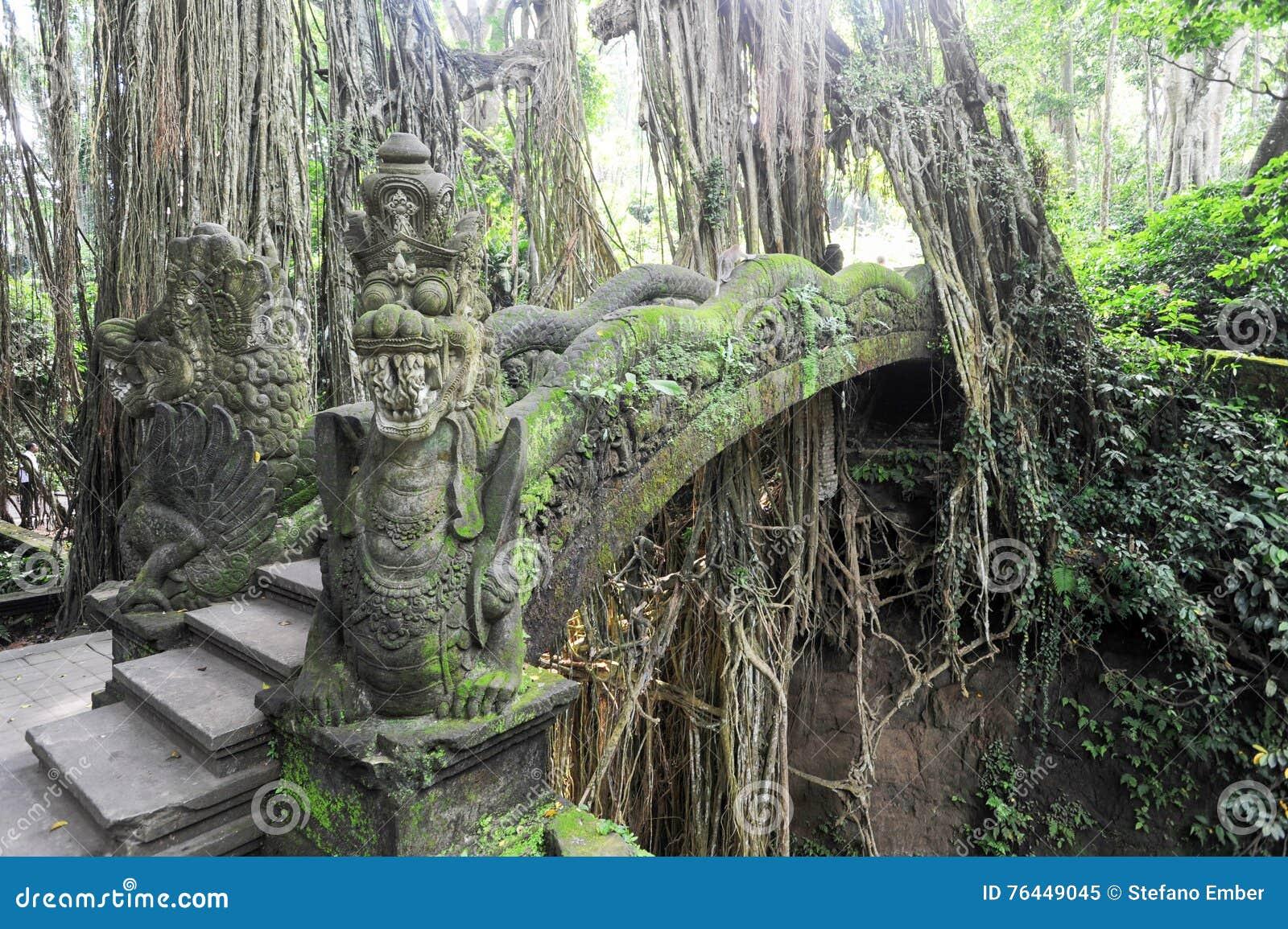 Dragon Bridge no macaco sagrado Forest Sanctuary, Ubud, Bali