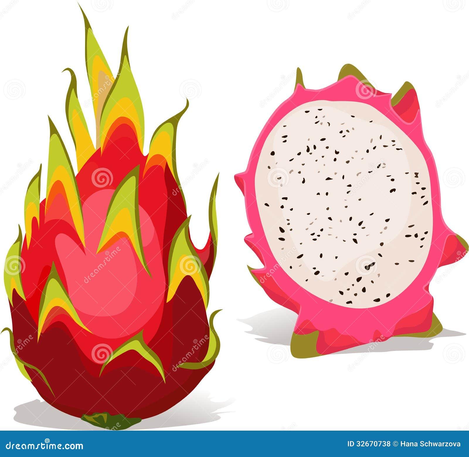 Dragon Fruit - Vector Illustration Royalty Free Stock Photos - Image ...