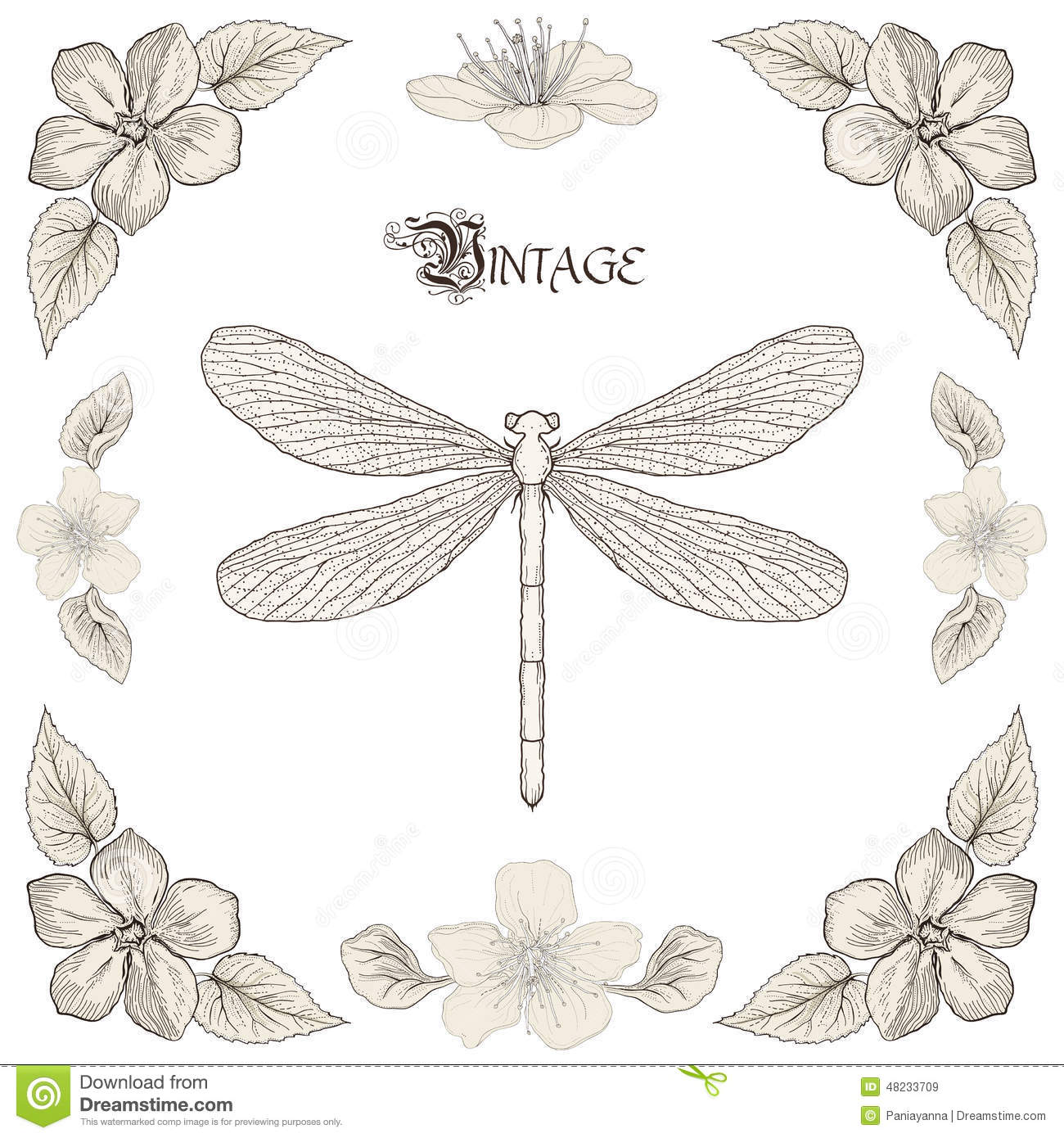 Dragonfly Drawing Vintage Engraving Style Stock Vector ...