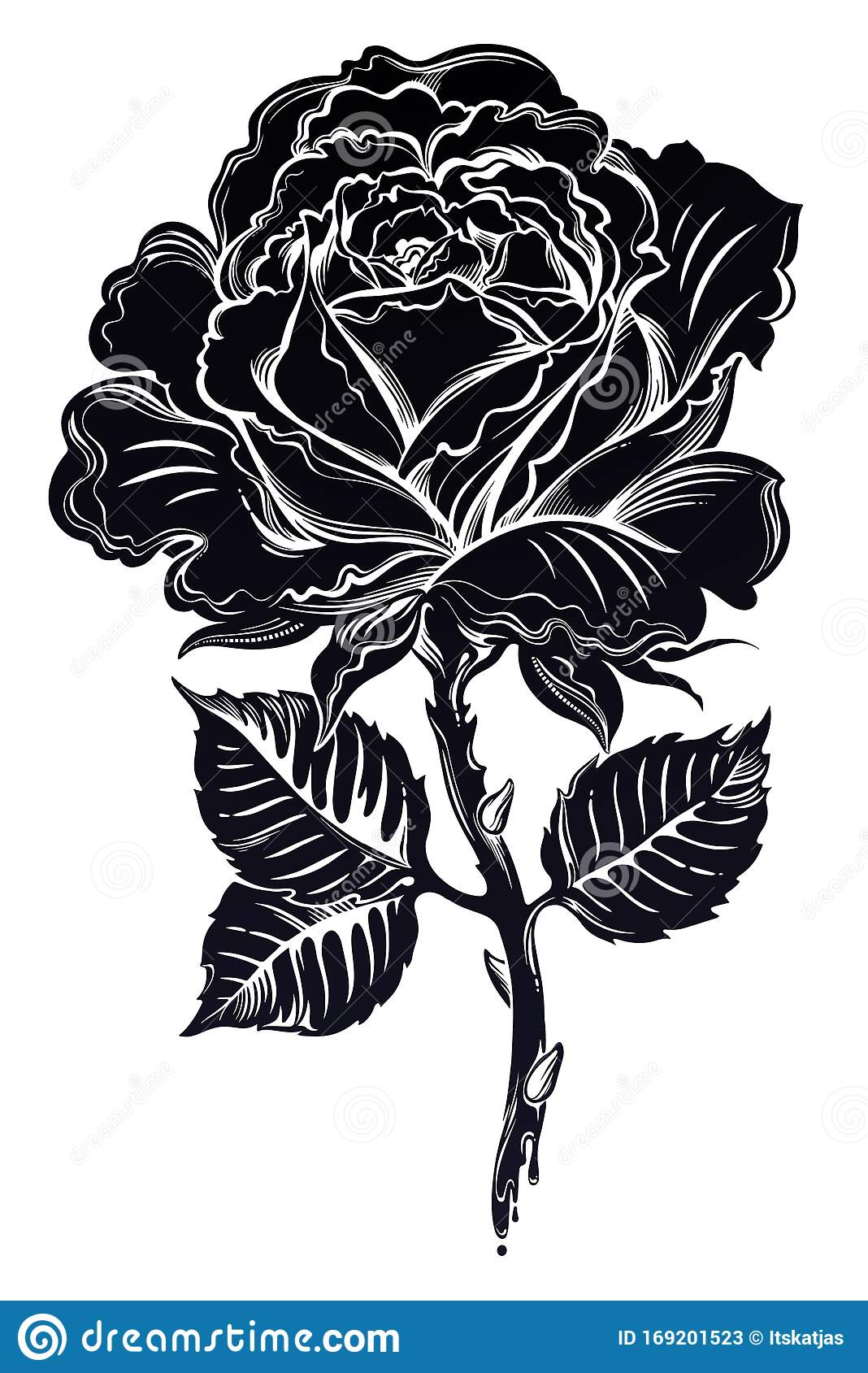 Dramatic Floral Hand Drawn Black Rose Blossom In Full Bloom In Flash Tattoo Style Stock Vector Illustration Of Elegant Line 169201523