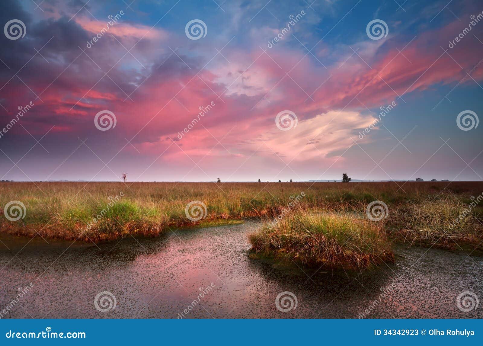 Citaten Over Zonsondergang : Dramatische roze zonsondergang over moeras stock