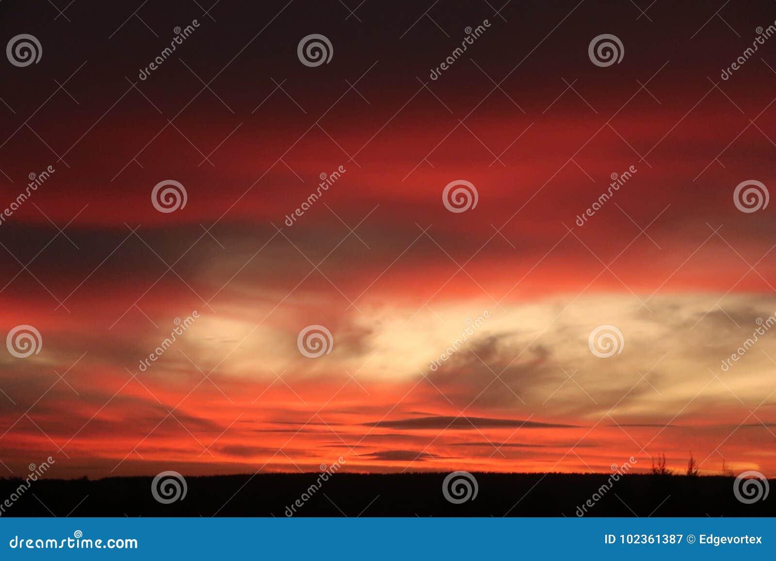 Citaten Over Zonsondergang : Dramatische zonsondergang over pijnboombos stock