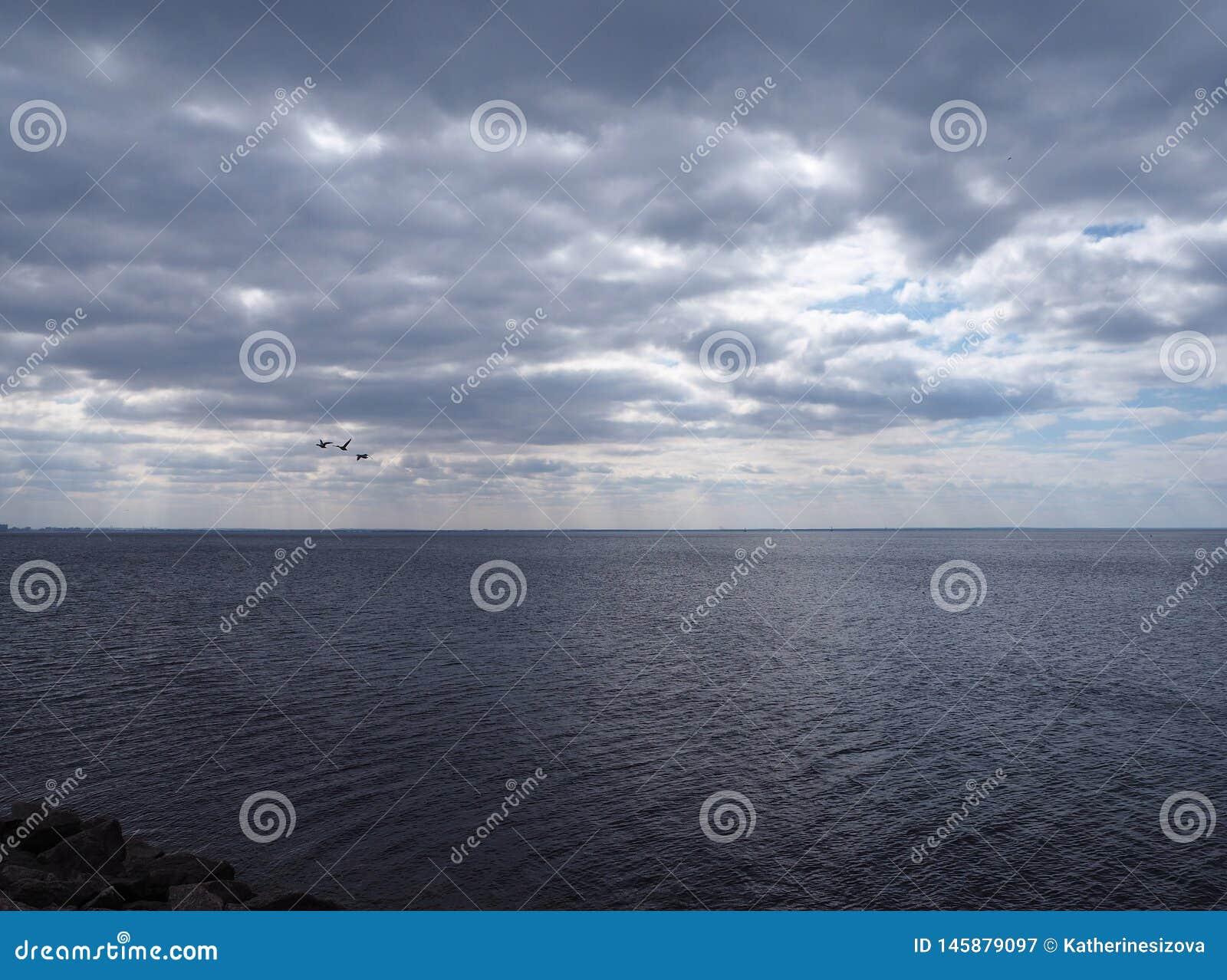 Dramatyczny ciemny chmurny niebo nad morzem