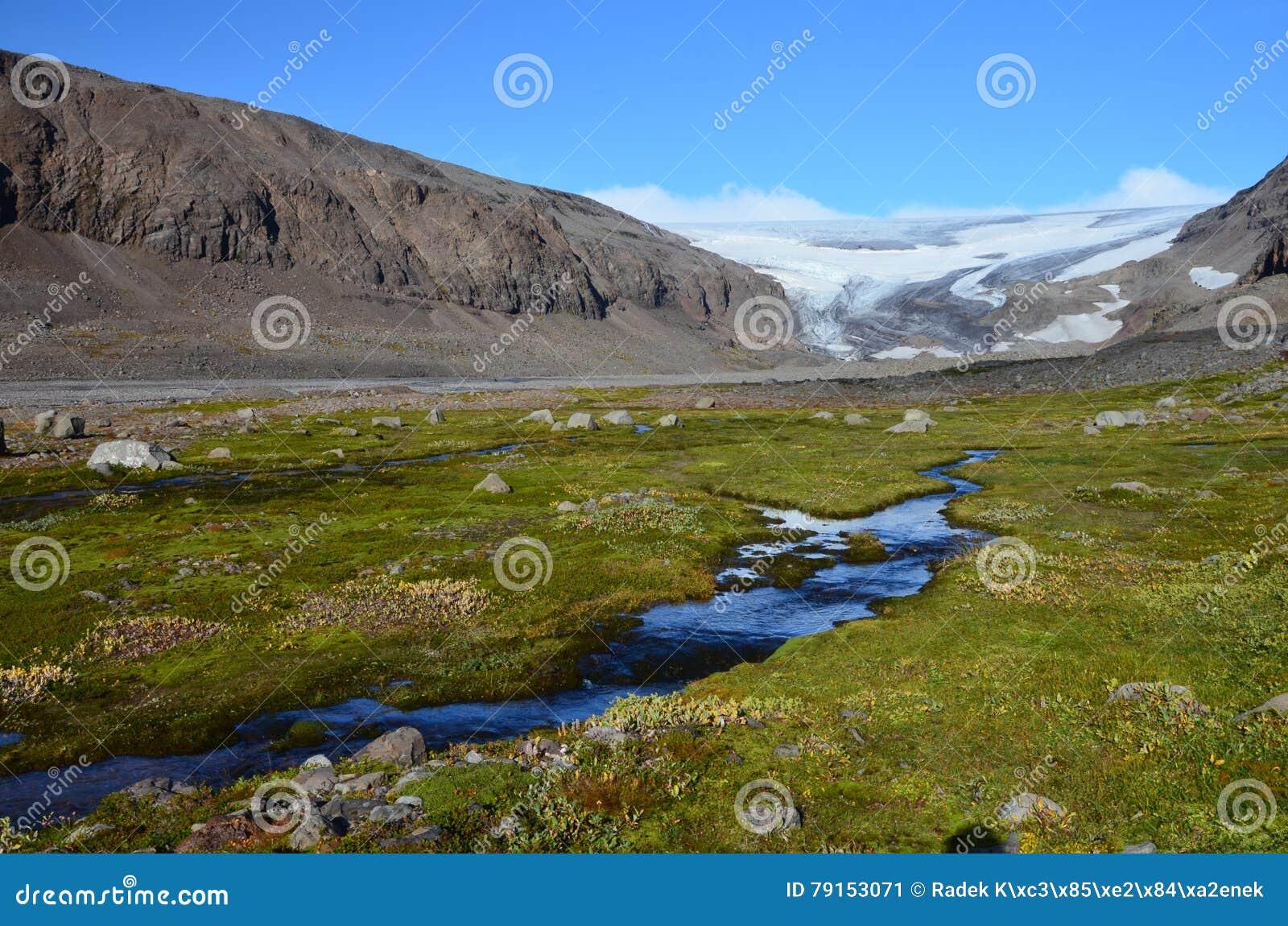 Drangajokull glaciär, Kaldalon, Island