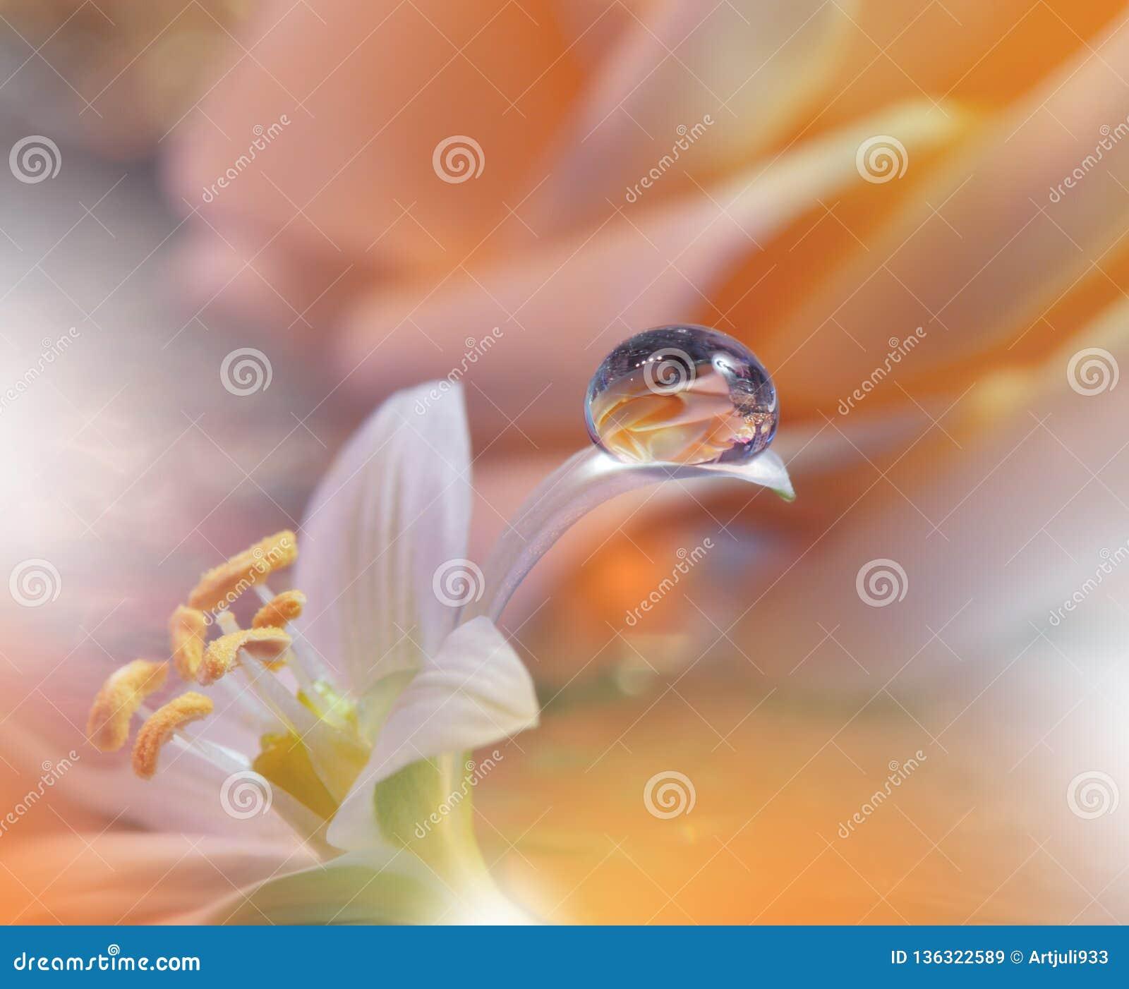 Drapeau ou en-tête de Web de fleur de nature de source Macro photo abstraite Fond artistique Conception d imagination Papier pein