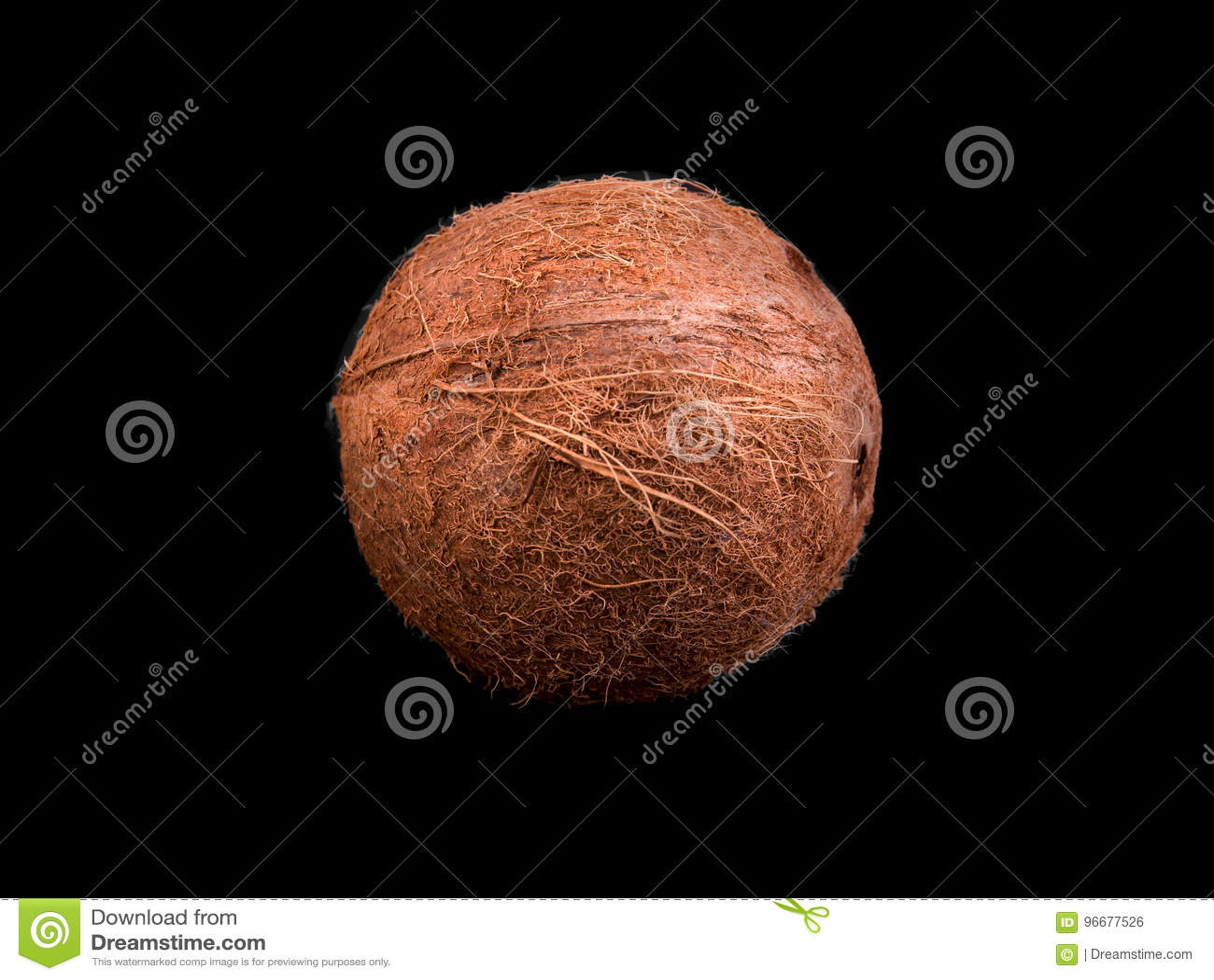 ist die kokosnuss eine nuss