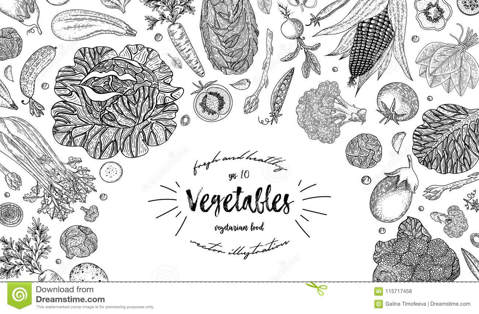 Draufsichtrahmen des Gemüses Tinten-Hand gezeichnete Vektorillustration Landwirtmarktmenü-Designschablone Organisches Gemüse